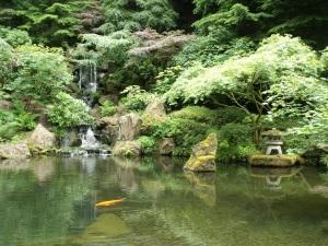 Pool in Japanese garden